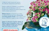 Fiori d'Azzurro, un fiore contro gli abusi, ARGOS Associazione Forze di Polizia sabato 14 Aprile 2018 a Fonte Nuova, dalla parte dei bambini con il Telefono Azzurro