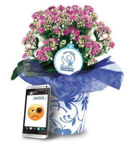 Fiori D'Azzurro, coltiva il seme del rispetto. Scegli un fiore contro gli abusi. Sabato 14 Aprile 208 dalle ore 09.00.