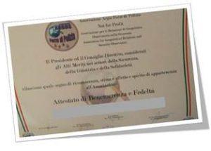 Diploma di Benemerenza e Fedeltà ARGOS Associazione Forze di POLIZIA